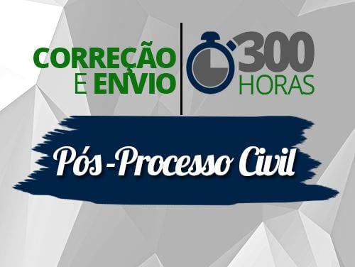 CORREÇÃO E ENVIO - PÓS PROCESSO CIVIL 300h